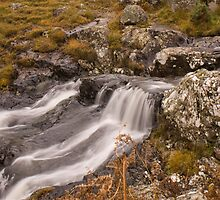 Go With the Flow by Georden