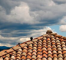 Red Tiled Roof with Storm Clouds by jojobob