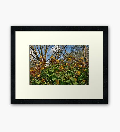 When Nature Meets Nature Framed Print