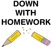 Down with Homework Photographic Print