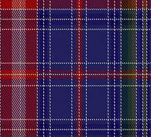 01204 Pavlova Blue Fashion Tartan Fabric Print Iphone Case by Detnecs2013