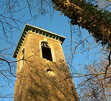 Pepperpot Brown's Folly Bathford by simontait