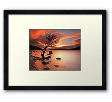 Lone Tree at Sunset. Framed Print