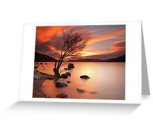 Lone Tree at Sunset. Greeting Card
