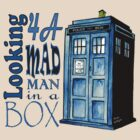 Looking 4A Mad Man In A Box by RiverbyNight