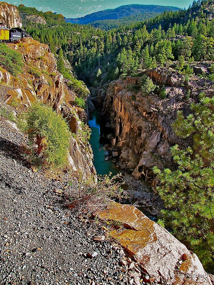 Durango/Silverton R.R. by Nancy Richard