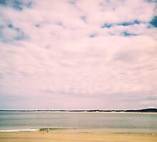 Plum Island, Study #2, April 2011 by jenjohnson1968