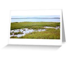 Parker River Wildlife Refuge #3, August 2012 Greeting Card