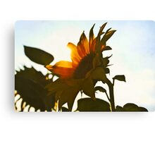 I'd Send You A Flower - A Sunflower Bright Canvas Print