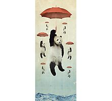 Pandachutes Photographic Print