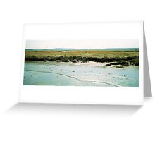 Plum Island, April 2012 Greeting Card