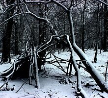 Snowy Hideout by liberthine01