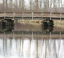 blue heron bridge by cielleigh