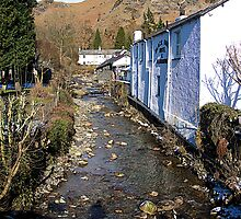 Church Beck at Coniston by Tom Gomez