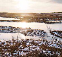Twilight, Plum Island, January 2013 by jenjohnson1968