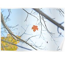 Alone in Autumn Poster