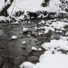 Snowy Brook by Dave Staton