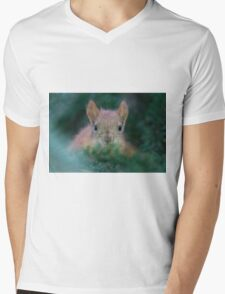 Baby Squirrel in the Fur Tree Mens V-Neck T-Shirt
