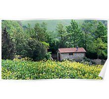 Springtime Walk in Tuscany Poster