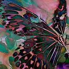 Digital: Butterflies by Marion Chapman
