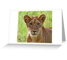 I am an inquisitive cub of the sparta pride Greeting Card