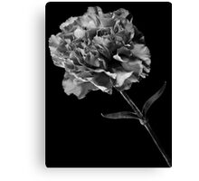 Flower 6 Canvas Print