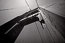 Under and Over - Golden Gate Bridge - San Francisco - USA by Norman Repacholi