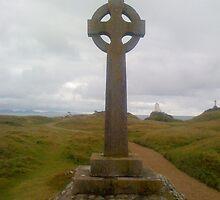 Saxon Cross On Ynys Llanddwyn by LADeville
