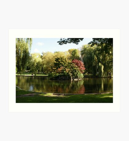 Fall In Boston Art Print