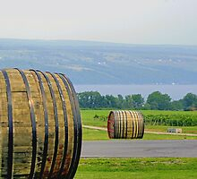 Wine Casks & Bee Hives Above Seneca Lake by Gene Walls