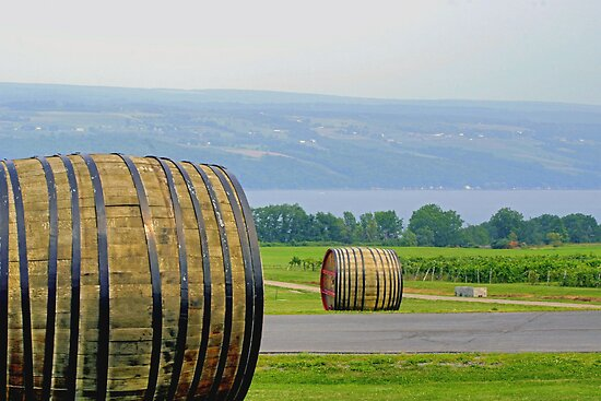 Wine Casks & Bee Hives Above Seneca Lake by Gene Walls