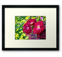 roses with a splash of yellow Framed Print