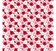 Stylish romantic trendy red pink roses floral Photographic Print