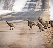 County Road Crew by Thomas Young