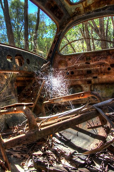 Deserted  Bushland NSW   by Kym Bradley
