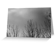 Black White and Gray Greeting Card