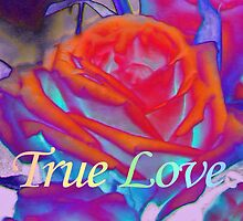 True Love by aprilann