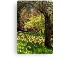 A Spring Stroll Canvas Print