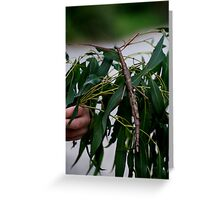 Monster Stick Insect Greeting Card