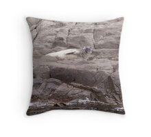 Antarctic  Seal Throw Pillow