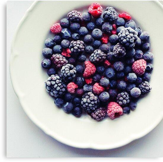 Frozen Winter Berries by Quorra86