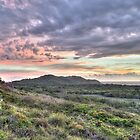 Dawn at Arakwal National Park Byron Bay by Cheryl Styles