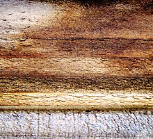 Prairie Dawn by Kathie Nichols