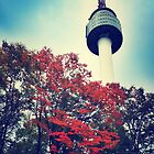 Seoul Tower by Daphney1019