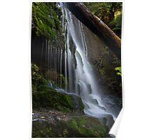 Pencil Pine Falls - Cradle Mountain National Park Poster