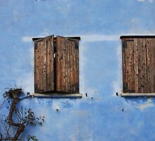 Two Windows in Blue Wall in Topolo by jojobob