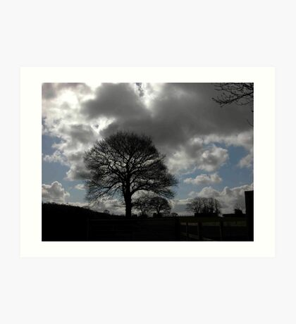 Tree on Hill Art Print
