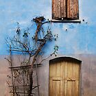 Window and Door in Blue Wall, Topolo by jojobob