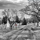Cemetary in B&W by Jermaine Parker