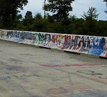 Painted Bridge by WildestArt